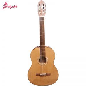 گیتار-سولاریوس