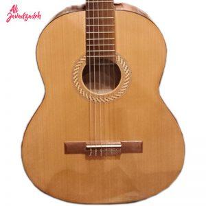 گیتار-سولاریوس2