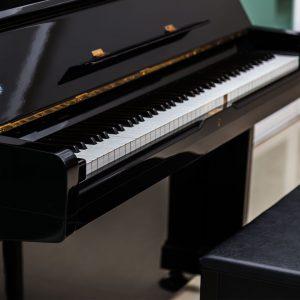 تنوع پیانو در سایت علی جوادزاده